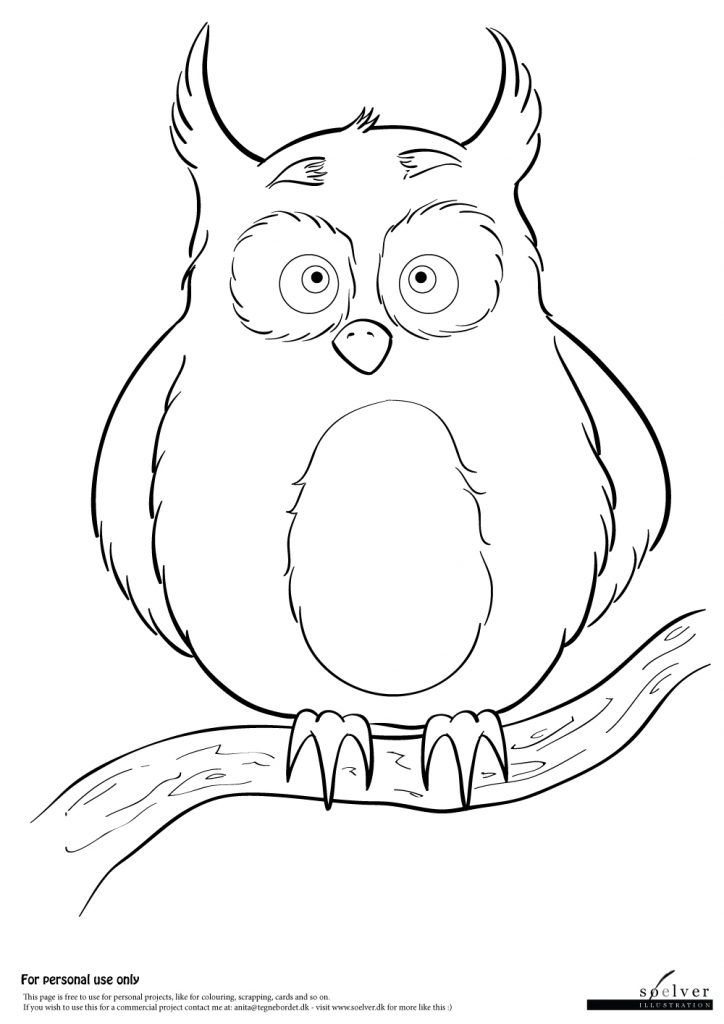 Owl | Coloring Page